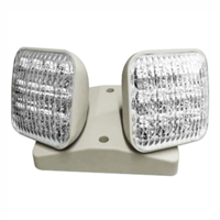 LED Remote Lamp Head with Double Head